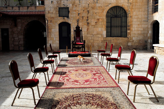 """A cat walks on a carpet before the arrival of the Greek Orthodox Patriarch of Jerusalem Theophilos III to lead the """"Washing of the Feet"""" ceremony amid the coronavirus disease (COVID-19) outbreak in Jerusalem's Old City"""