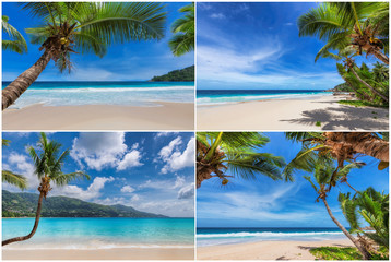 Wall Mural - Tropical white sand beach with coco palms and the turquoise ocean on Paradise island. Kit 4 stock photos styled paradise beach.