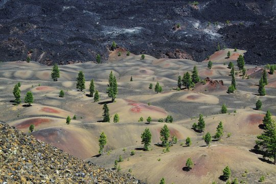 High Angle View Of Trees Against River At Lassen Volcanic National Park