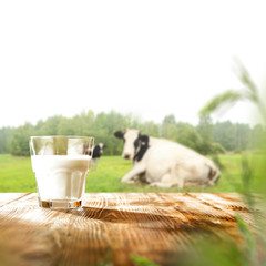 Fototapete - Desk of free space and fresh cold milk on wooden top