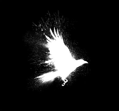 White silhouette of a flying raven with spread wings with paint splashes, splatters and blots isolated on a black background.