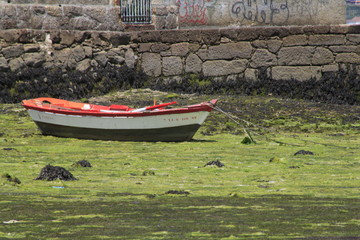 Printed roller blinds Bestsellers Rowboat Moored At Moss Covered Beach