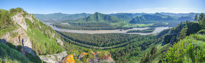 Wall Mural - Panoramic view of the Katun river valley, Altai. Sunny day in early summer. Travel and vacation in the mountains.