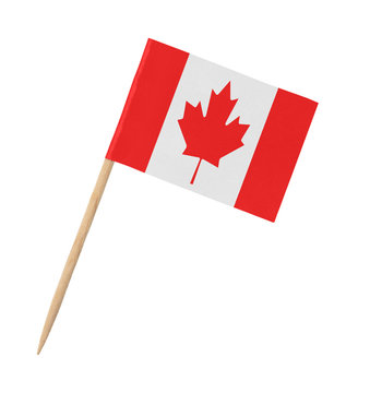 Small paper Canadian flag on wooden stick