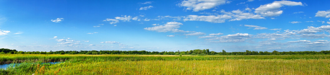 Panorama of a summer meadow against a blue sky with clouds. Summer landscape Fotomurales