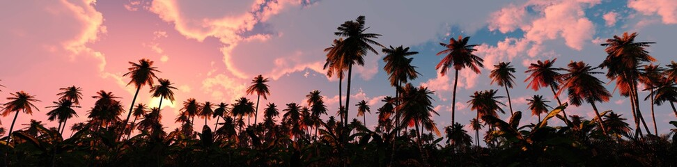 Papiers peints Arbre Palm trees on sunset background, silhouettes of palm trees at sunset, sky with palm trees