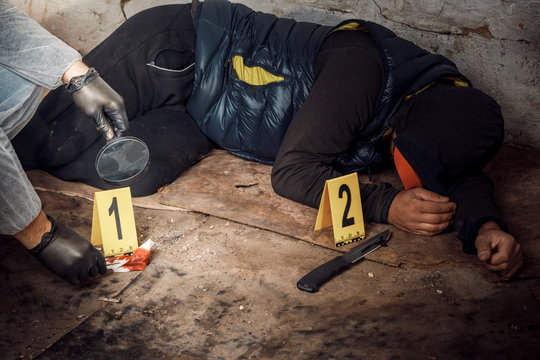 An expert is gathering evidence at a crime scene. The law and the concept of police forensics.