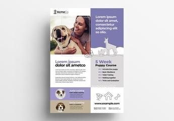 Puppy School & Dog Walking Flyer Layout