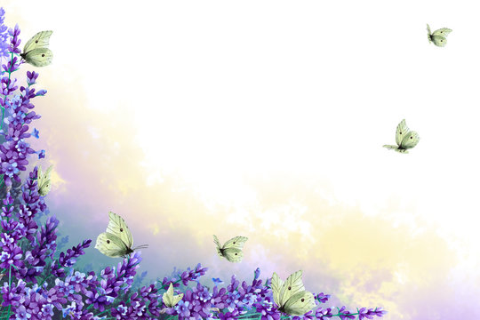 Corner frame of lavender twigs with flowers with multicolor fog and flock butterflies. Hand drawn watercolor. Copy space.