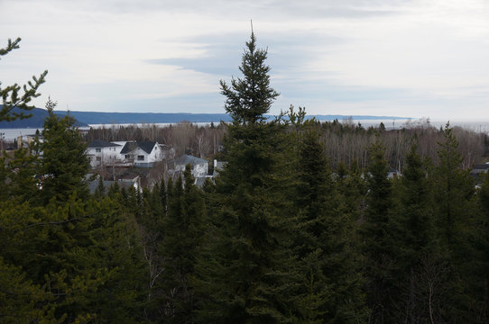 Baie-Comeau, view through evergreen trees. The city is named after the adjacent Comeau Bay, which is named in honour of naturalist Napoléon-Alexandre Comeau. Province of Quebec, Canada.