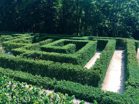 High Angle View Of Hedge Maze At Park
