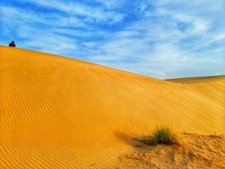 Photo sur Aluminium Rouge traffic Sand dunes in desert of Algeria