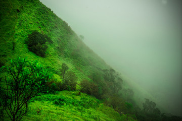 beautiful scenery of kodachadri hills. beautiful view of hills and misty cloudy atmosphere.taken with nikon D5300 DSLR camera.
