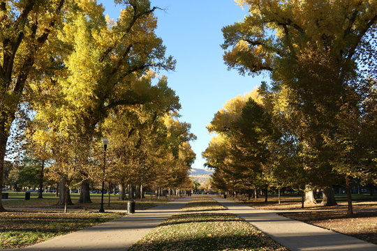 Beautiful autumn in Utah