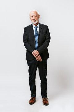 Professional businessman full body portrait
