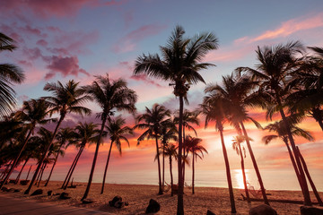 Wall Mural - Exotic tropical beach landscape for background or wallpaper. Sundown beach scene for travel inspirational, Summer holiday and vacation concept for tourism relaxing.