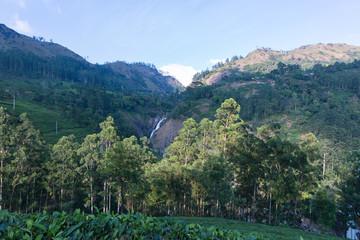 Attukad waterfalls in Munnar kerala india