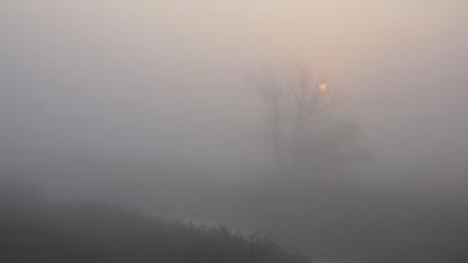 Aluminium Prints Dark grey Sunrise in the fog