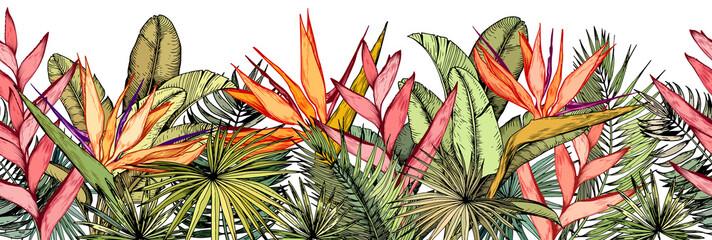 Naklejka premium z tropikalnymi liśćmi palm, egzotycznymi kwiatami heliconia i strelitzia.