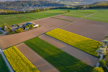 Aerial view of Agriculture fields landscape in Spring