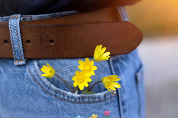 yellow flowers in jeans pocket