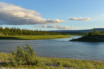 Pike river on the Yamal Peninsula.