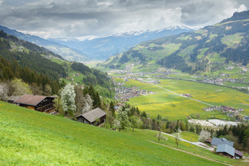 Fototapete - Blick ins frühlingshafte Zillertal in Tirol