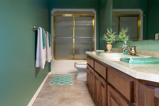 Remodeled Home Bathroom