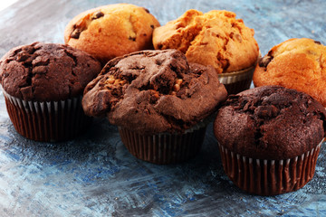 Wall Mural - Chocolate muffin and nut muffin, homemade bakery on background.