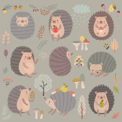 Canvas Print - Hedgehog set hand drawn style. Cute Woodland characters playing, sleeping, relaxing and having fun.