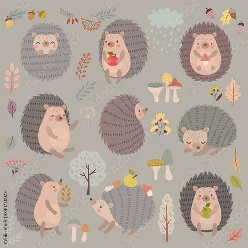 Wall mural Hedgehog set hand drawn style. Cute Woodland characters playing, sleeping, relaxing and having fun.