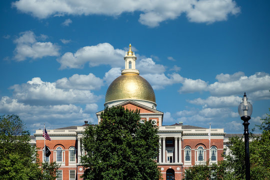 Gold dome of Boston's Massachussett's State House beyond green tree under blue sky