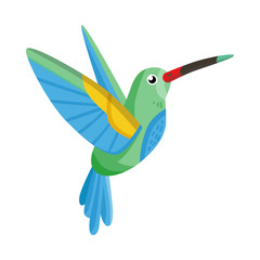 Vector illustration of hummingbird and bird icon. Set of hummingbird and flying stock symbol for web.