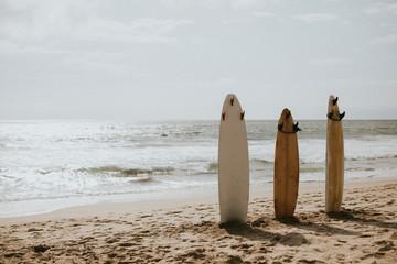 Three surfboards no people
