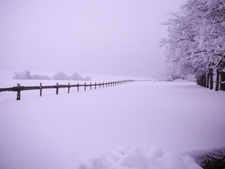 Foto auf Gartenposter Flieder Snow Covered Landscape Against Clear Sky
