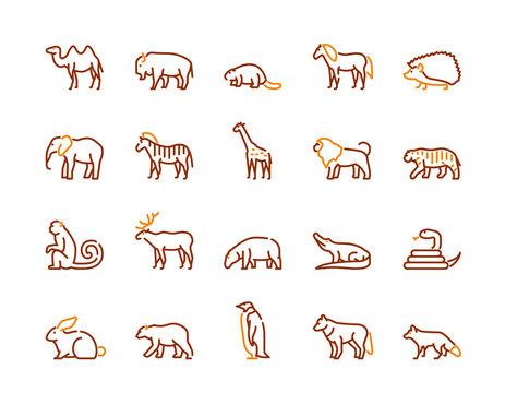 Wild animals symbols color linear vector icon set