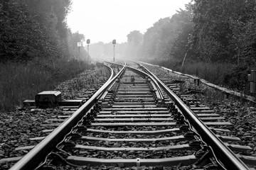 Spoed Fotobehang Spoorlijn Railroad Tracks Amidst Trees On Field During Foggy Weather