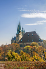 Fototapete - View of Erfurt cathedral, Germany