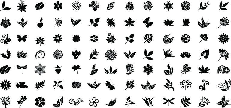 Big set of nature icons