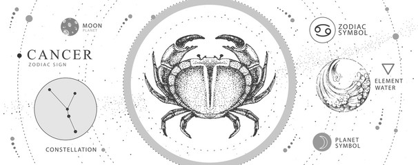 Modern magic witchcraft card with astrology Cancer zodiac sign. Realistic hand drawing crab illustration. Zodiac characteristic