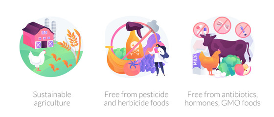 Sustainable organic agriculture abstract concept vector illustration set. Free from pesticide and herbicide, antibiotics hormones GMO food, farming process, ecology oriented growing abstract metaphor.