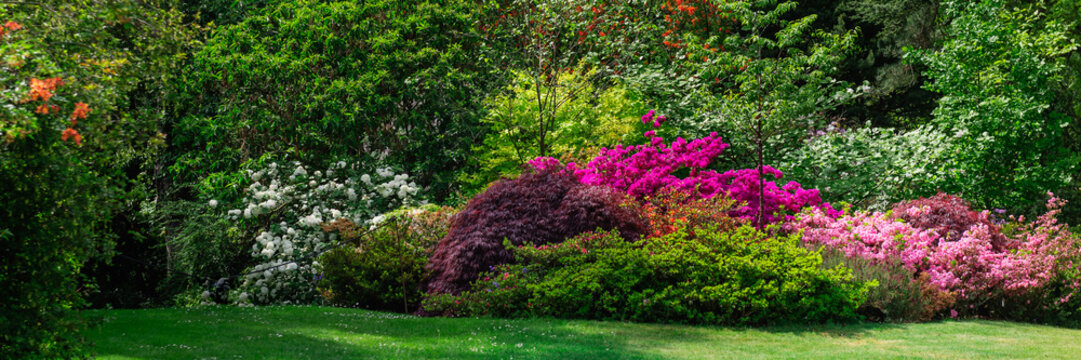 Beautiful Garden with blooming trees during spring time, Wales, UK, banner size