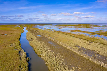 Wall Mural - Aerial view Tidal Marshland  Waddensea UNESCO