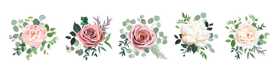 Fototapeta Dusty pink blush, white and creamy rose flowers vector design wedding bouquets obraz