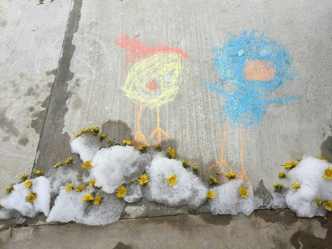 Close-up View Of Chalk Drawing On Street