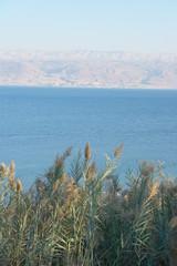 Morze Martwe, ألبَحْر ألمَيّت, Al-Bahr al-Majit, יָם...