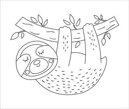 Vector cute sloth hanging on a tree brunch outline. Funny tropical exotic animal black and white illustration. Fun coloring page for children. Jungle summer clip art.