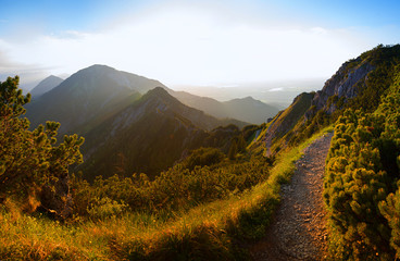 hiking trail at herzogstand mountain, evening in the bavarian alps