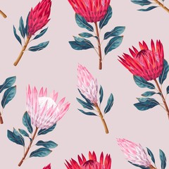 Vector seamless pattern with high detailed protea