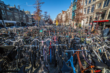 Fototapeten Amsterdam bikes in amsterdam